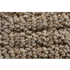Royalty Carpet Mills STAINMASTER Gallery Artful Beauty Multi-Level Loop Pile Indoor Carpet