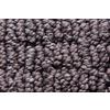 Royalty Carpet Mills STAINMASTER Gallery Colorful Cliff Multi-Level Loop Pile Indoor Carpet