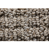 Royalty Carpet Mills STAINMASTER Gallery Downstream Multi-Level Loop Pile Indoor Carpet