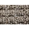 Royalty Carpet Mills STAINMASTER Gallery Downstream Multi-Level Loop Pile Indoor Carpet