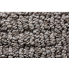 Royalty Carpet Mills STAINMASTER Gallery Grey Stone Multi-Level Loop Pile Indoor Carpet