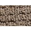 Royalty Carpet Mills STAINMASTER Gallery Rocky Walls Multi-Level Loop Pile Indoor Carpet