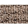Royalty Carpet Mills STAINMASTER Gallery Weeping Rock Multi-Level Loop Pile Indoor Carpet