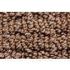 Royalty Carpet Mills STAINMASTER Gallery Zion Narrows Multi-Level Loop Pile Indoor Carpet