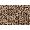 Royalty Carpet Mills STAINMASTER Gallery Crafted Detail Multi-Level Loop Pile Indoor Carpet