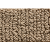 Royalty Carpet Mills STAINMASTER Gallery Lavish Dream Multi-Level Loop Pile Indoor Carpet