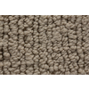 Royalty Carpet Mills STAINMASTER Gallery Panoramic View Multi-Level Loop Pile Indoor Carpet