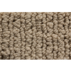 Royalty Carpet Mills STAINMASTER Gallery Rare Quality Multi-Level Loop Pile Indoor Carpet
