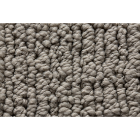 Royalty Carpet Mills Active Family Sojourn Surface Mix Multi-Level Loop Pile Indoor Carpet