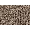 Royalty Carpet Mills STAINMASTER Gallery Unparalleled Multi-Level Loop Pile Indoor Carpet