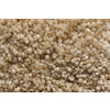 Royalty Carpet Mills TruSoft Footloose Create Harmony Textured Indoor Carpet