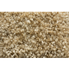 Royalty Carpet Mills TruSoft Stainmaster Gallery Infusion Textured Indoor Carpet