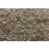 Royalty Carpet Mills TruSoft Stainmaster Gallery Optimism Textured Indoor Carpet