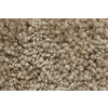 Royalty Carpet Mills TruSoft Stainmaster Gallery Redefined Textured Indoor Carpet