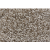 Royalty Carpet Mills TruSoft Stainmaster Gallery Soulfulness Textured Indoor Carpet