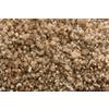 Royalty Carpet Mills TruSoft Stainmaster Gallery Splurge-Worth Textured Indoor Carpet