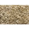 Royalty Carpet Mills TruSoft Stainmaster Gallery Tranquil Tones Textured Indoor Carpet