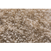 Royalty Carpet Mills TruSoft Stainmaster Gallery Warm Embrace Textured Indoor Carpet
