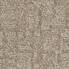 Royalty Carpet Mills Active Family Cloud Mist Fashion Forward Indoor Carpet