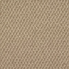 Royalty Carpet Mills Active Family Versailles Berber Indoor Carpet