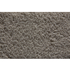 STAINMASTER Active Family Silica Saxony Indoor Carpet