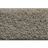 STAINMASTER Active Family Whisper Saxony Indoor Carpet