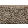 STAINMASTER Active Family Sanctuary Saxony Indoor Carpet
