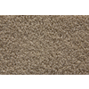 STAINMASTER Active Family Tannery Saxony Indoor Carpet