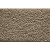 STAINMASTER Active Family Playa Saxony Indoor Carpet