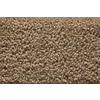 STAINMASTER Active Family Stainmaster Gallery Nirvana Saxony Indoor Carpet