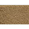 STAINMASTER Active Family Stainmaster Gallery Golden Saxony Indoor Carpet