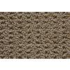 STAINMASTER Trusoft Stainmaster Gallery Sundance Multi-Level Loop Pile Indoor Carpet