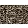 STAINMASTER Trusoft Stainmaster Gallery London Multi-Level Loop Pile Indoor Carpet