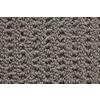 STAINMASTER Trusoft Stainmaster Gallery Hampton Multi-Level Loop Pile Indoor Carpet