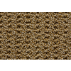 STAINMASTER Trusoft Stainmaster Gallery Galley Multi-Level Loop Pile Indoor Carpet