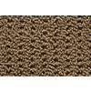 STAINMASTER Trusoft Stainmaster Gallery Vintage Multi-Level Loop Pile Indoor Carpet