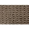 STAINMASTER TruSoft Merriment Cavern Pattern Indoor Carpet