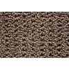 STAINMASTER Trusoft Stainmaster Gallery Pecan Multi-Level Loop Pile Indoor Carpet