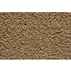 STAINMASTER Trusoft Stainmaster Gallery Wicker Cut and Loop Indoor Carpet