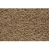 STAINMASTER Trusoft Stainmaster Gallery Pyramid Cut and Loop Indoor Carpet