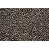 STAINMASTER Trusoft Stainmaster Gallery Softique Cut and Loop Indoor Carpet