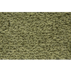 STAINMASTER Trusoft Stainmaster Gallery Palmetto Cut and Loop Indoor Carpet