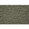 STAINMASTER Trusoft Stainmaster Gallery Eucalyptus Cut and Loop Indoor Carpet
