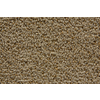 STAINMASTER Trusoft Stainmaster Gallery Thatch Cut and Loop Indoor Carpet