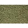 STAINMASTER TruSoft Mixology Palmetto Pattern Indoor Carpet