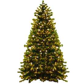 Shop GKI Bethlehem Lighting 6 Ft Pre Lit Spruce Artificial Christmas Tree Wit
