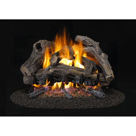 Shop Style Selections 24 Vented Gas Log With Dual Burner At