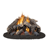 Style Selections 24-in 55,000-BTU Dual-Burner Vented Gas Fireplace Logs