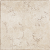 Del Conca Rialto White Thru Body Porcelain Floor and Wall Tile (Common: 16-in x 16-in; Actual: 15.75-in x 15.75-in)
