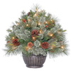 Westinghouse 2-ft Indoor/Outdoor Pine Pre-lit Decorative Artificial Tree with 50-Count Clear Lights